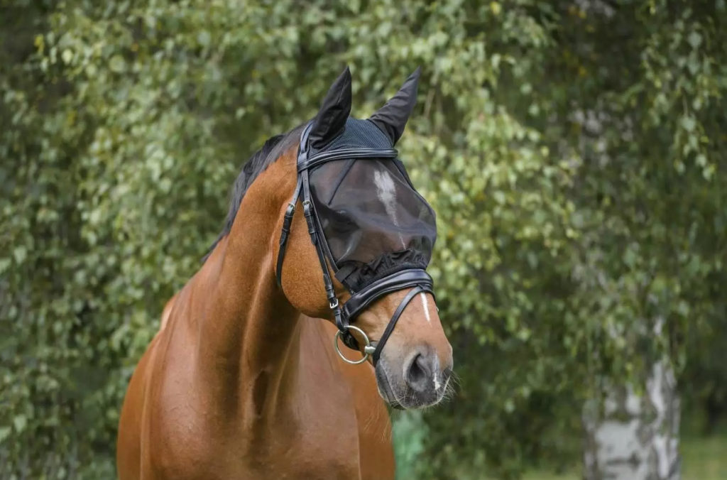 Masque anti-mouches Free-Ride (Showmaster)